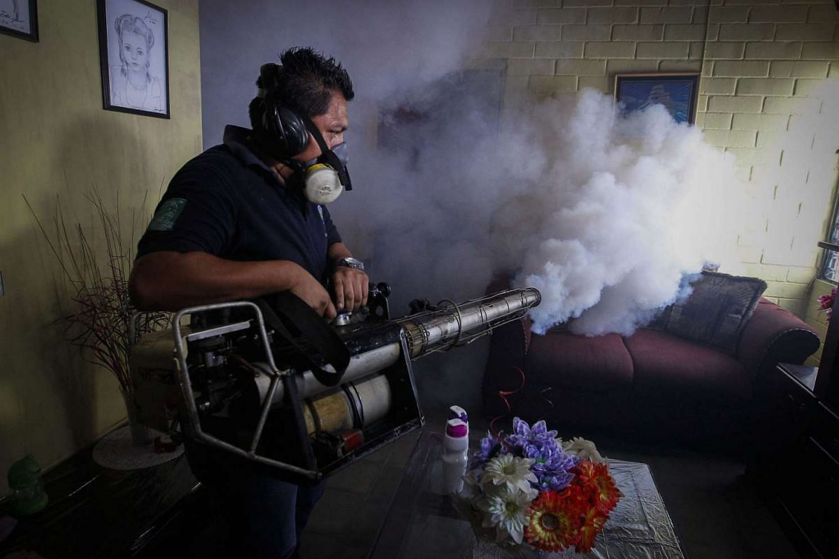 A worker of the Salvadorean Ministry of Health fumigates a house in Soyapango, El Salvador, Jan 21, 2016. Salvadorean authorities have begun a campaign of fumigation to reduce the presence of the mosquito that transmits the Zika virus. PHOTO: EPA