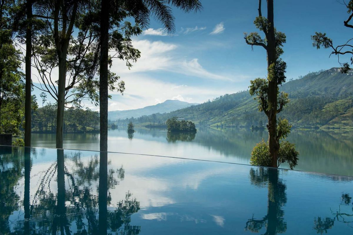 The infinity pool (above) at Tea Trails resort in Sri Lanka's luxuriant hill country.