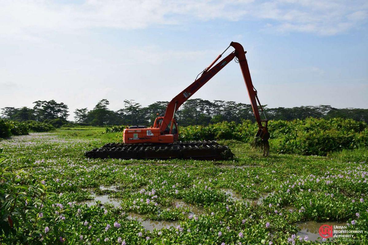A floating excavator dredging vegetation at Kranji Marshes.