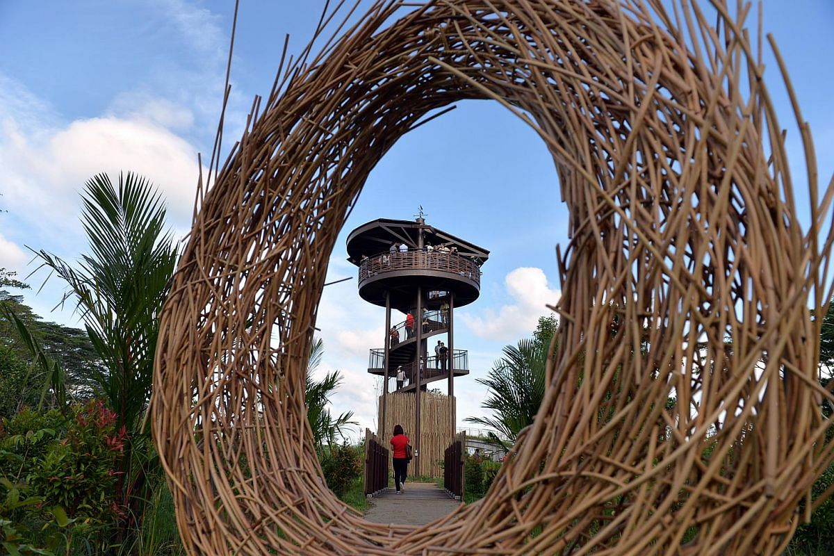 Visitors to the new 56.8ha Kranji Marshes can climb the 10m-high Raptor Tower for a bird's-eye view of the marshes.