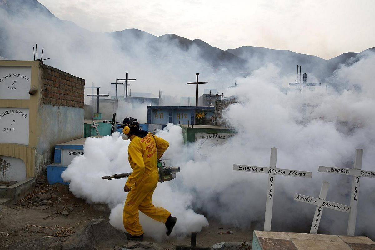 A health worker carries out fumigation as part of preventive measures against the Zika virus and other mosquito-borne diseases at a cemetery in Peru.