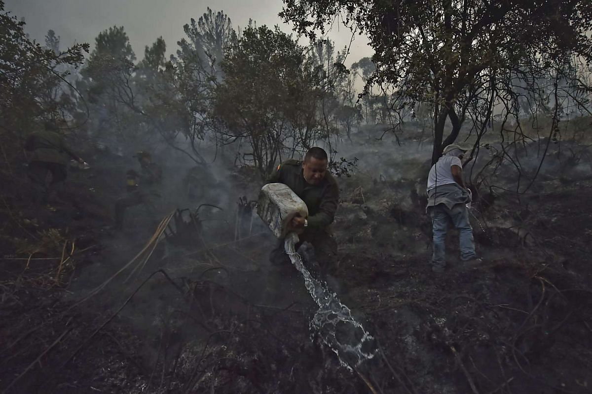Policemen and civilians trying to put out a forest fire in Bogota, Colombia, on Feb 2.