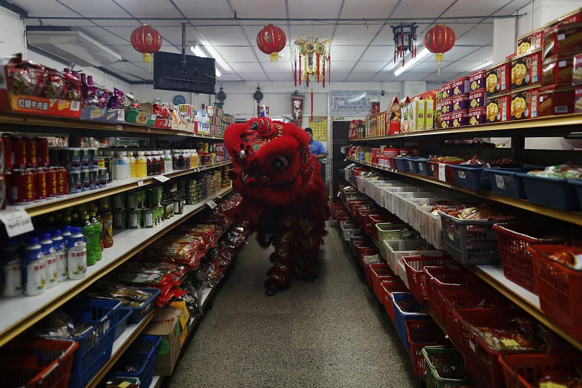 Dancers performing a lion dance inside a local shop during Chinese New Year celebrations in Chinatown in Panama City on Feb 8, 2016.