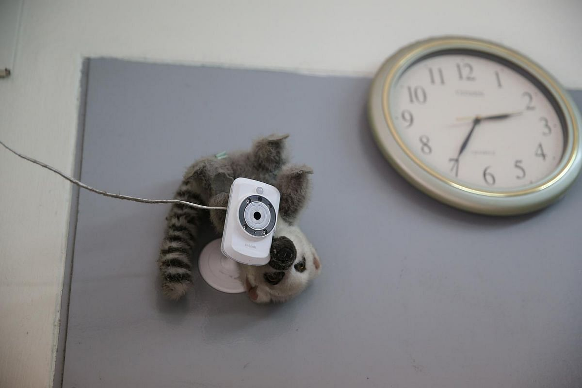 A CCTV adorned with a raccoon soft toy on the wall of SPCA's reception area in its Mount Vernon premises.