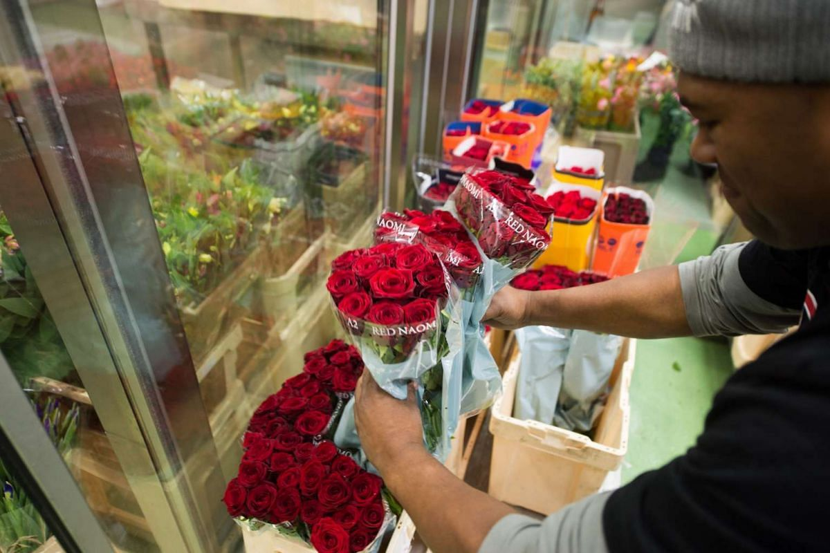 A man selects roses for sale ahead of Valentine's Day at a flower market in Vienna, Austria, on Feb 12, 2016.