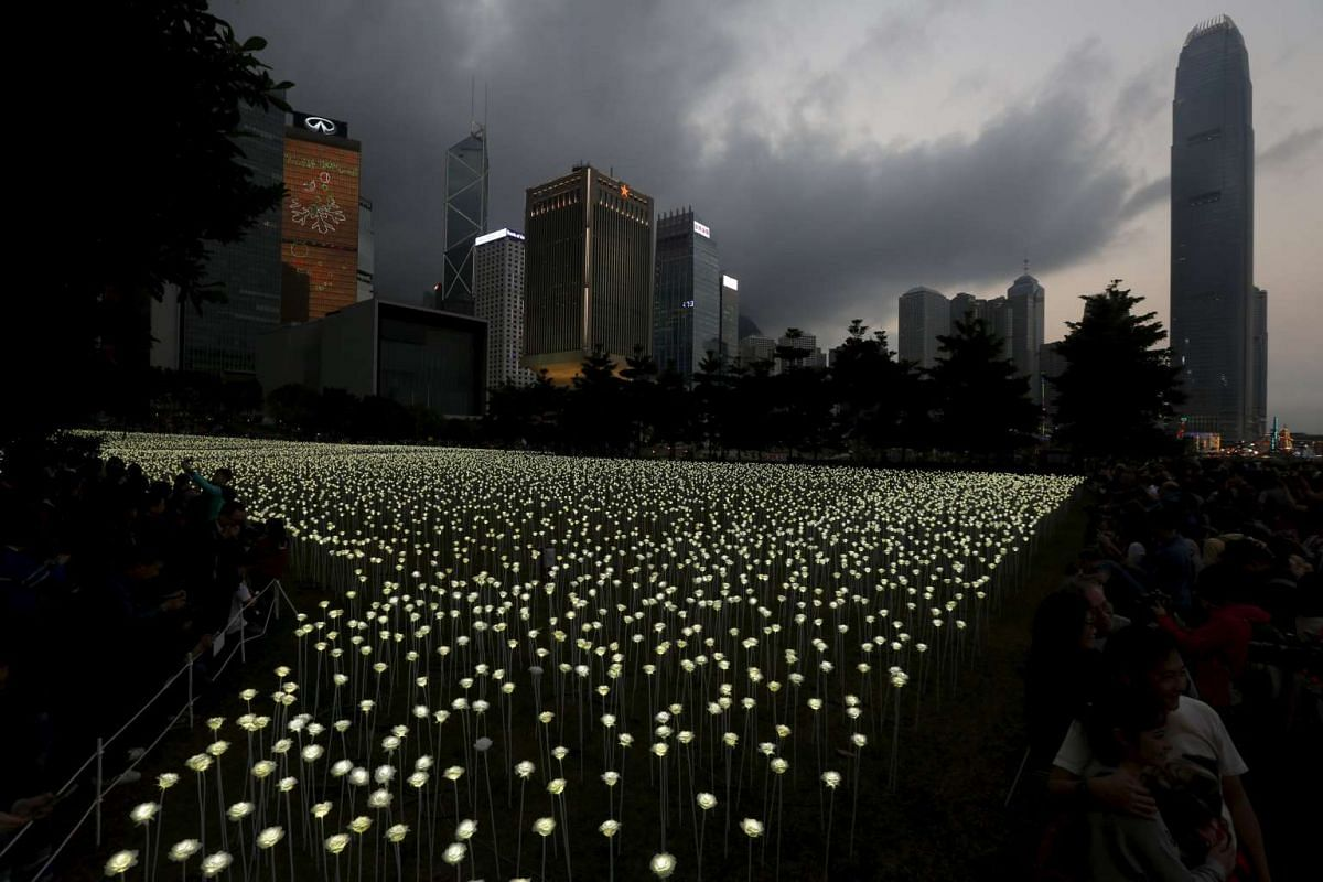 All aglow are 25,000 illuminated white rose shaped LED lights at Admiralty in front of the financial Central district in Hong Kong on Feb 13, 2016.