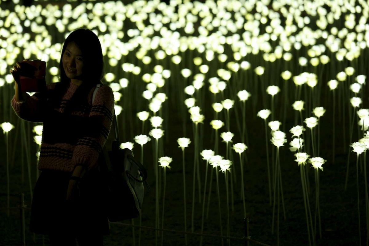A woman takes a selfie in front of illuminated white rose shaped LED lights at the Central district in Hong Kong on Feb 13, 2016.