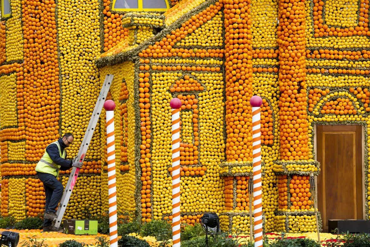 A man works on the sculpture 'Mort a Venise' (Death in Venice) made with lemons and oranges at the Lemon festival in Menton, France, on Feb 10, 2016.
