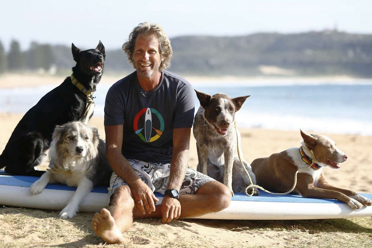 Chris de Aboitiz sits with his four dogs (from left) Max, Murph, Millie and Rama before riding the surf at Sydney's Palm Beach on Feb 18, 2016.