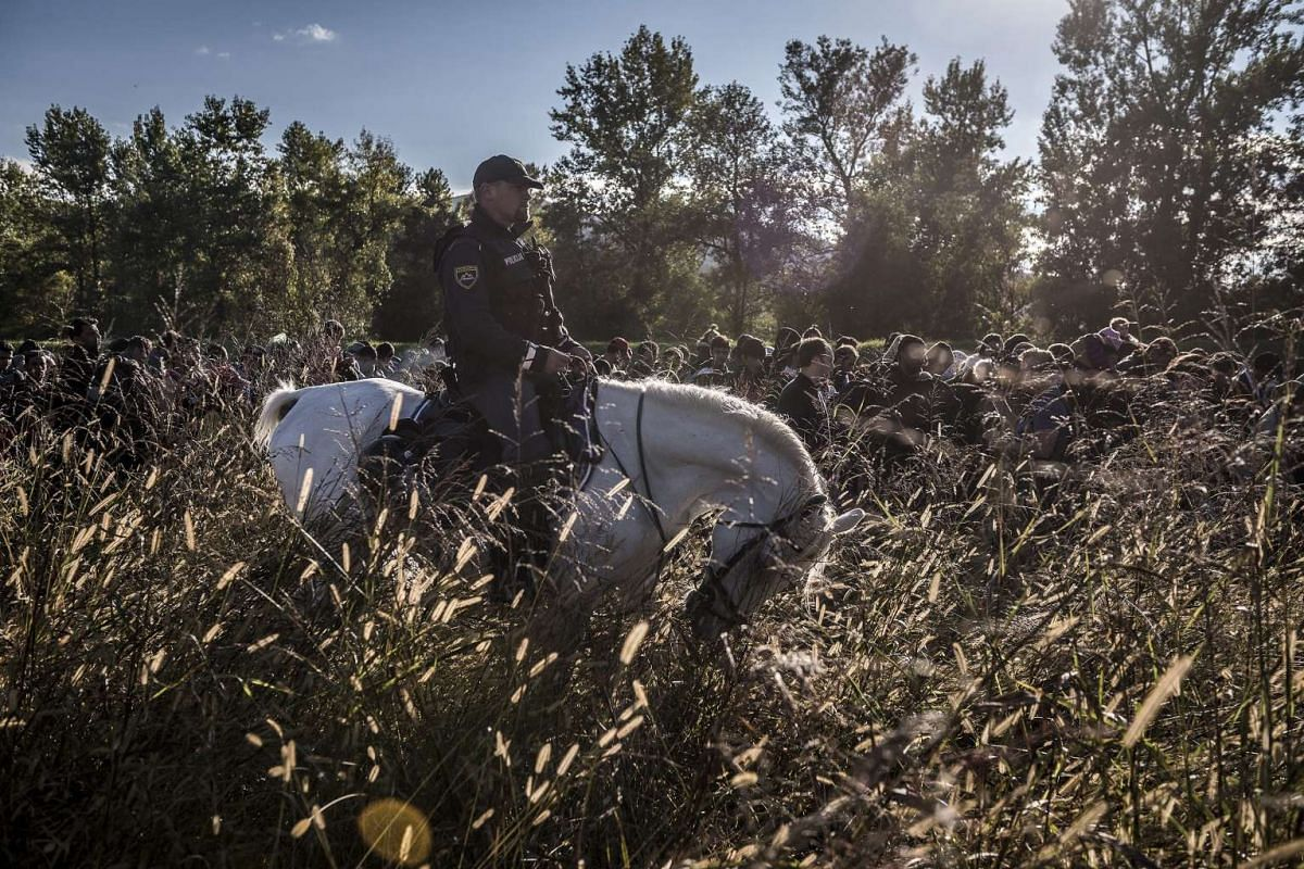 Russian photographer Sergey Ponomarev's photos won first prize for the Stories in the General News category at the 59th annual World Press Photo Contest. This photo depicts a Slovenian police officer on horseback escorting migrants after they crossed