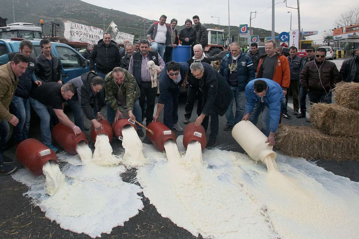 Farmers pour milk on the national road at the Vale of Tempe, near Larisa city, central Greece, Feb 18, 2016, during a protest against planned tax rises and pension reforms. PHOTO: EPA/VASSILIKI PASCHALI