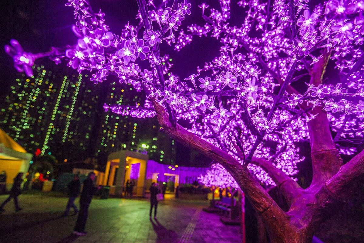 People taking photos of a tree decorated with purple LED lights at the New Territories East Lunar New Year Carnival in Hong Kong, on Feb 20, 2016.