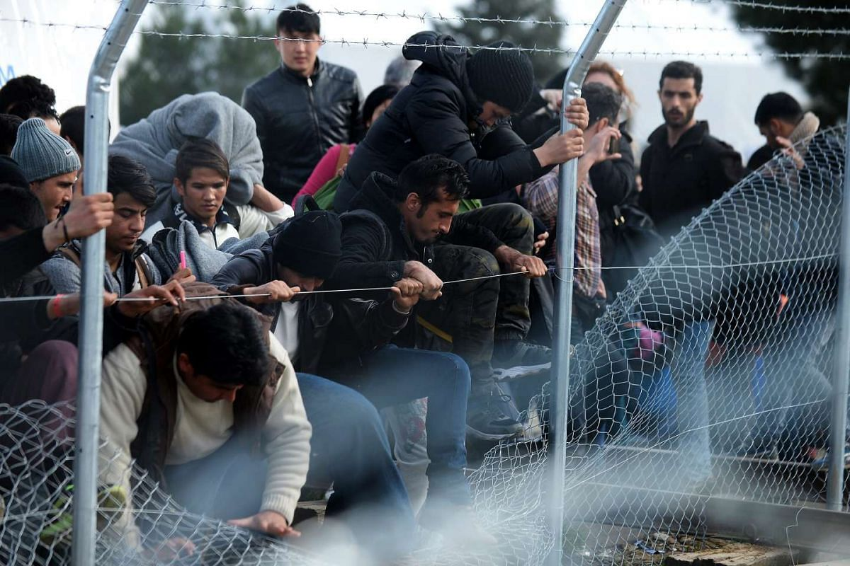Migrants try to cross through a fence at the Greek-Macedonian border, near the Macedonian city of Gevgelija, Feb 22, 2016. PHOTO: EPA