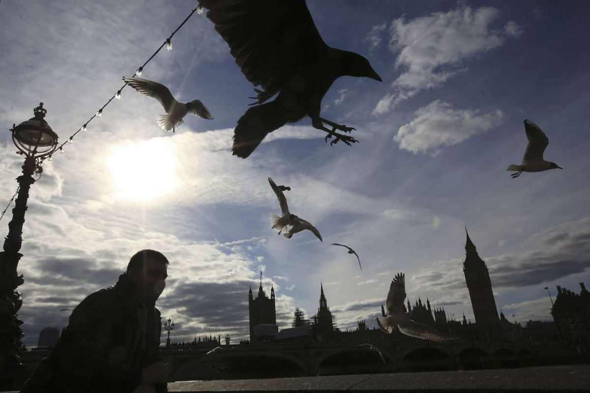 A man walking along the South Bank of the Thames as birds are silhouetted by the winter sunlight opposite the Houses of parliament in London, on Feb 28, 2016.