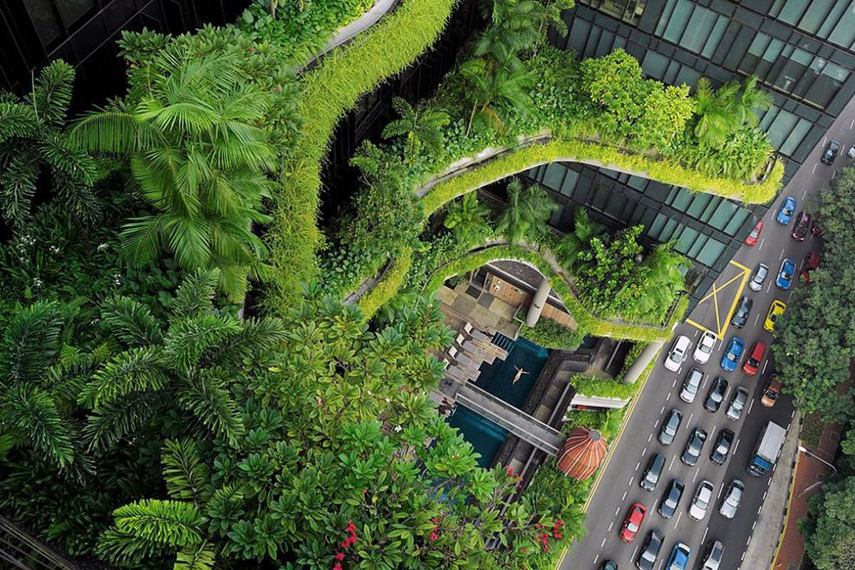 Go behind the scenes on how the Parkroyal on Pickering hotel's greenscape (above) came about with design practice Tierra Design.