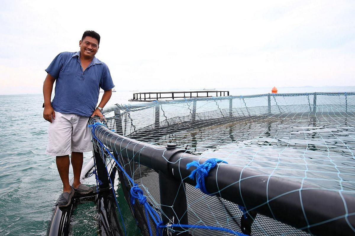 Marine Life Aquaculture chief operating officer Frank Tan.
