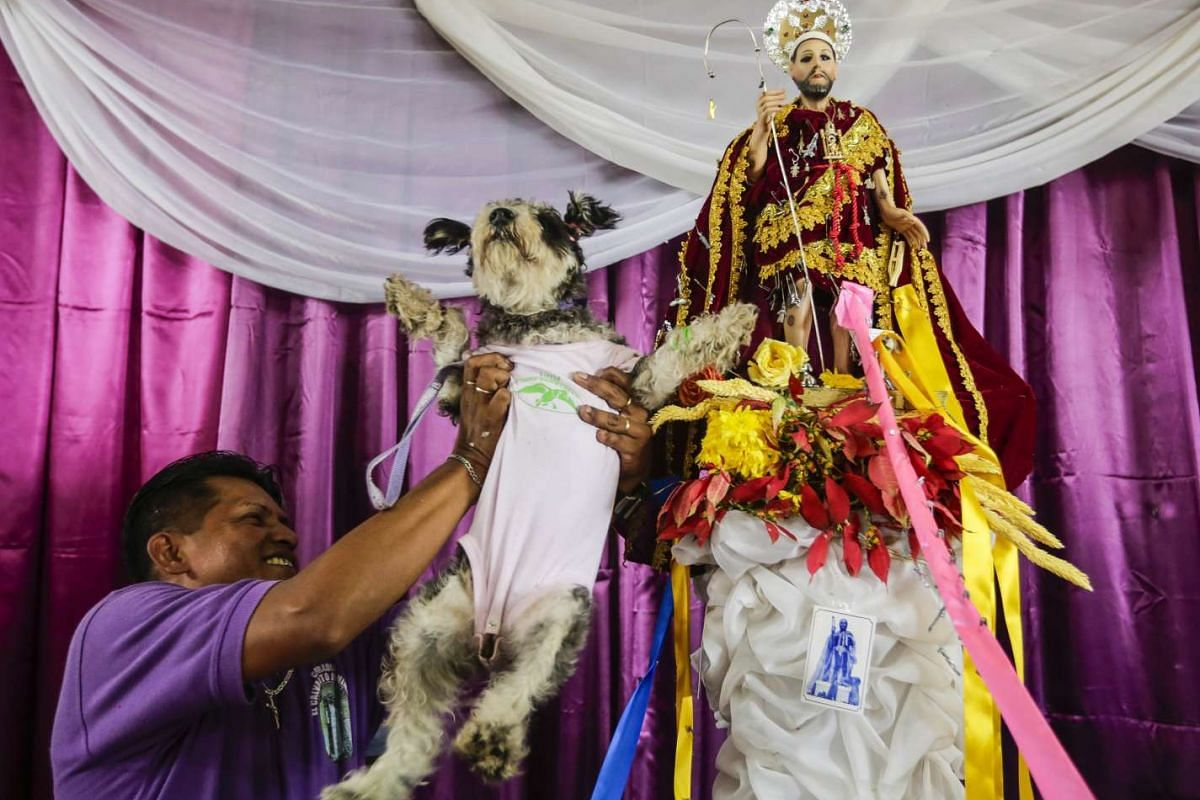 A man brings his fancy dressed dog to be blessed during the Saint Lazarus festival, on March 13, 2016, at the Santa Maria Magdalena parish in Masaya, 30 km south of Managua. PHOTO: AFP