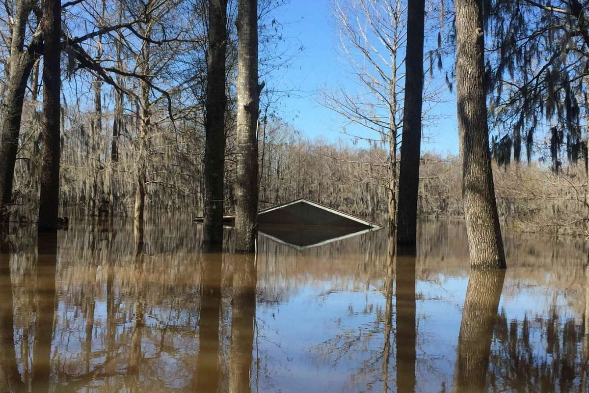 The top of the boathouse is all that shows in the flooded area of the Lake Bistineau community in Webster Parish Louisiana March 14, 2016. PHOTO: REUTERS