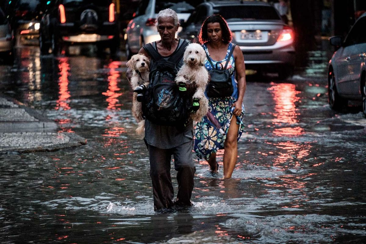 A man carries dogs while wading through a flooded street due to heavy rains in Rio de Janeiro, Brazil, on March 16, 2016. PHOTO: AFP