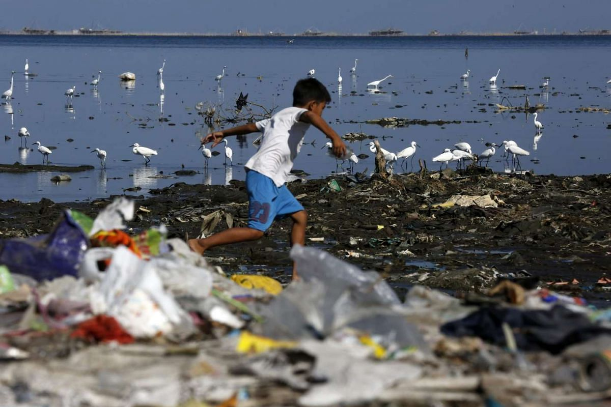 Migratory birds find food at a coastline full of rubbish in Manila, Philippines, on March 12, 2016.