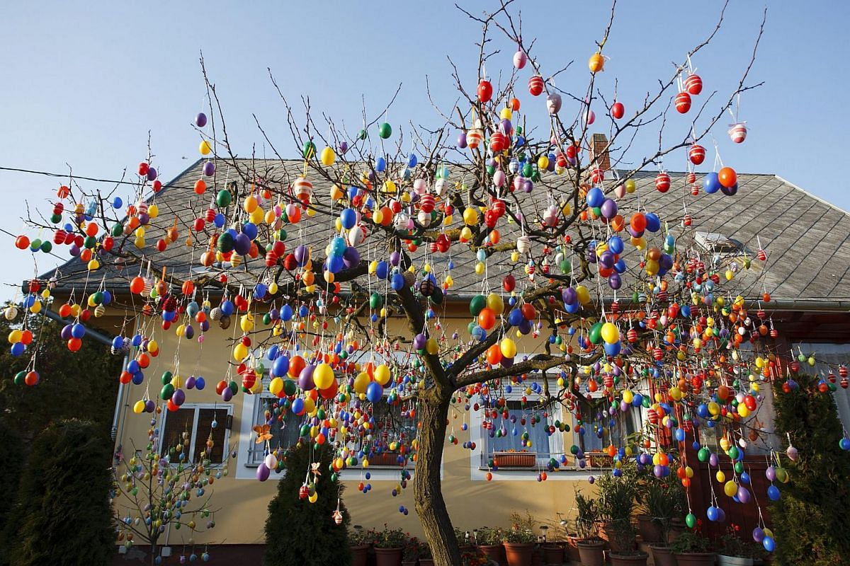 Painted Easter eggs hang from a tree in the garden of Istvanne Horvath in Budapest, Hungary, on March 20, 2016.