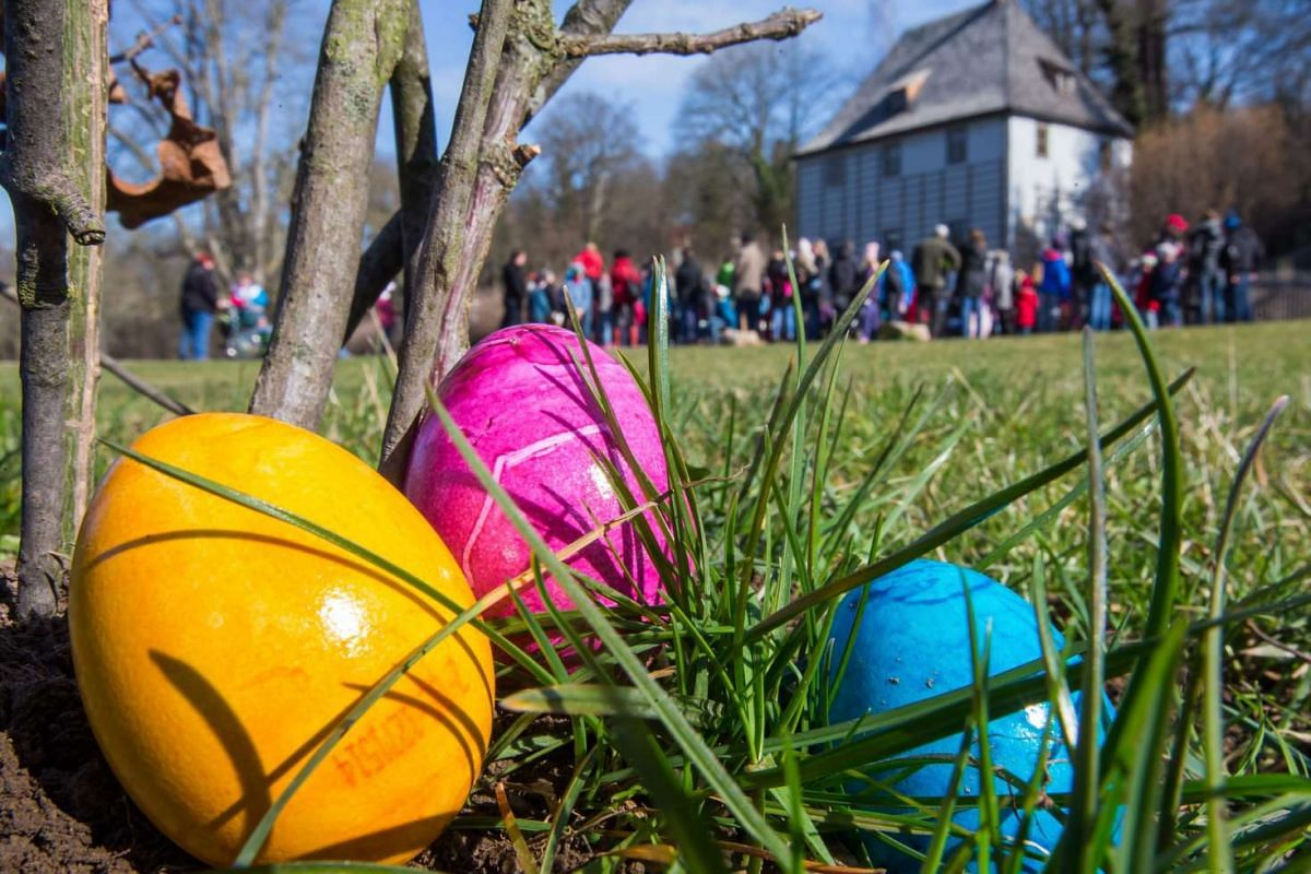 Colorful eggs lie in Ilmpark at Johann Wolfgang von Goethe's garden house for an Easter egg hunt in Weimar, Germany, on March 24, 2016. Goethe used to invite his friends' children and his grandchildren to hunt for eggs on Maundy Thursday.