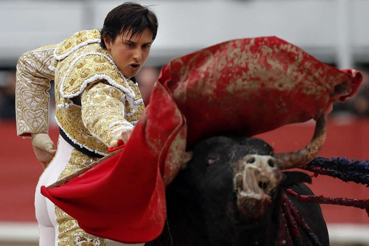Peruvian bullfighter Andres Roca Rey fights a bull in Arles, France, on March 27, 2016.
