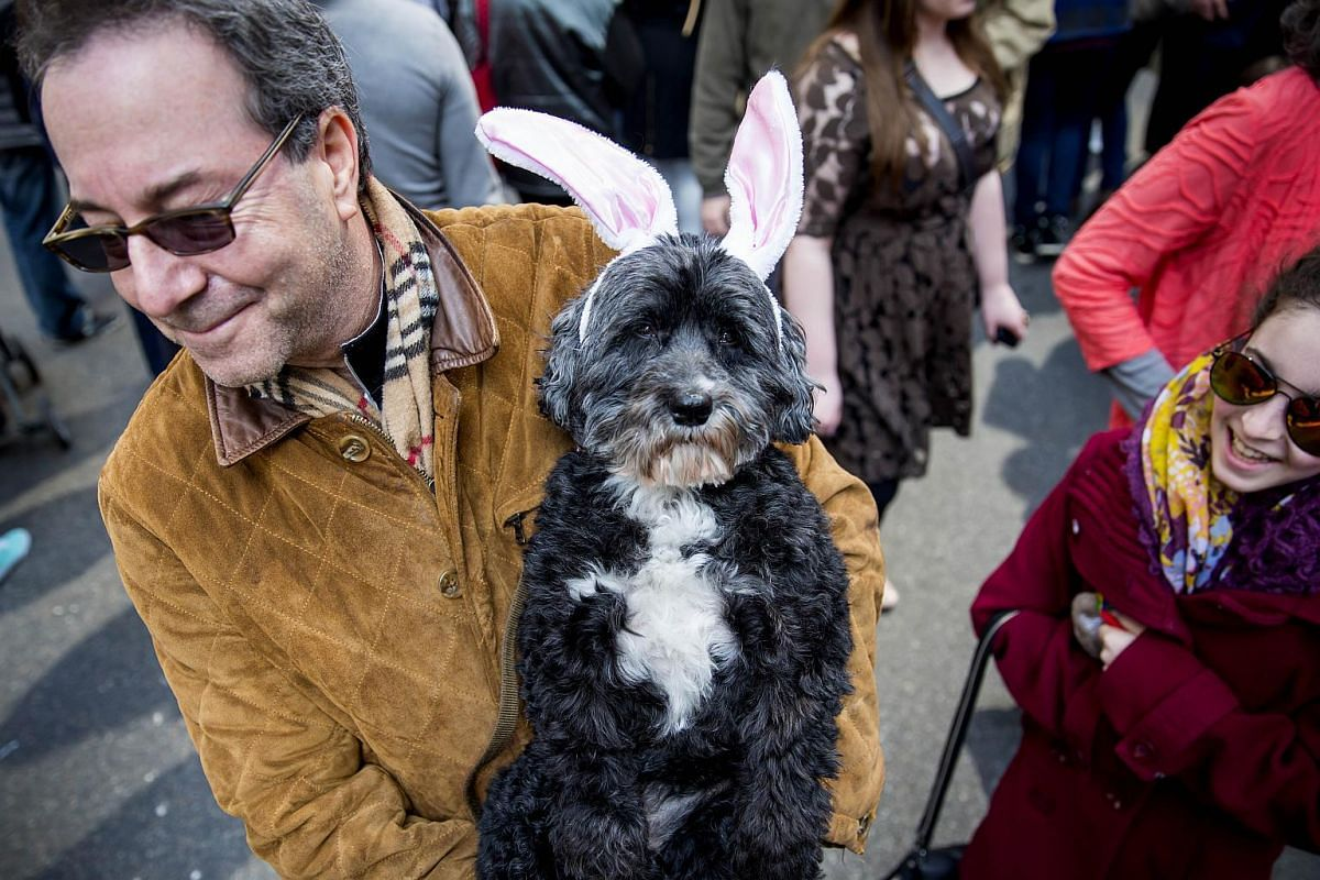 Todd Auslinder holds his dog Heidi during the Easter Parade and Bonnet Festival along Fifth Avenue, on March 27, 2016 in New York City.