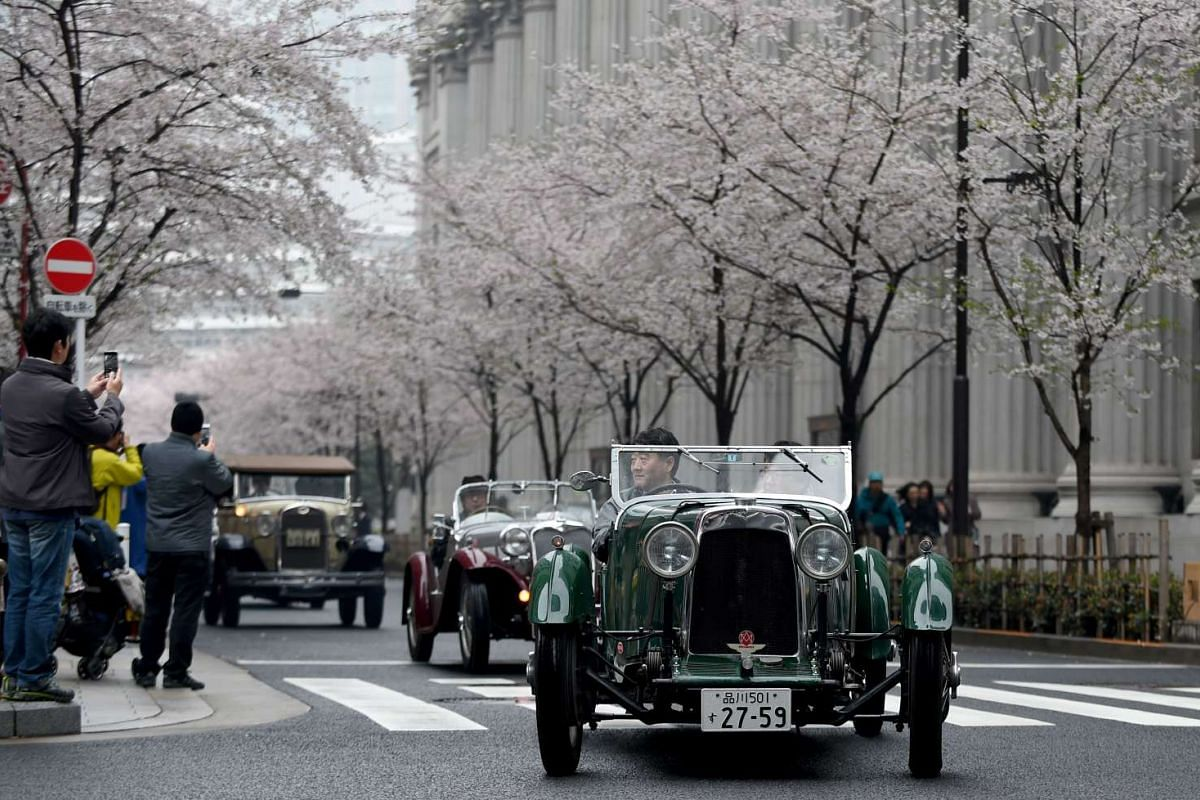 A 1930 Aston Martin 1.5 International (right) leads 1935 Singer Nine Le Man (centre) and 1931 Ford Model A (left), moving beside the cherry blossom trees during the Japan Classic Automobile 2016 event in Tokyo on April 3, 2016.