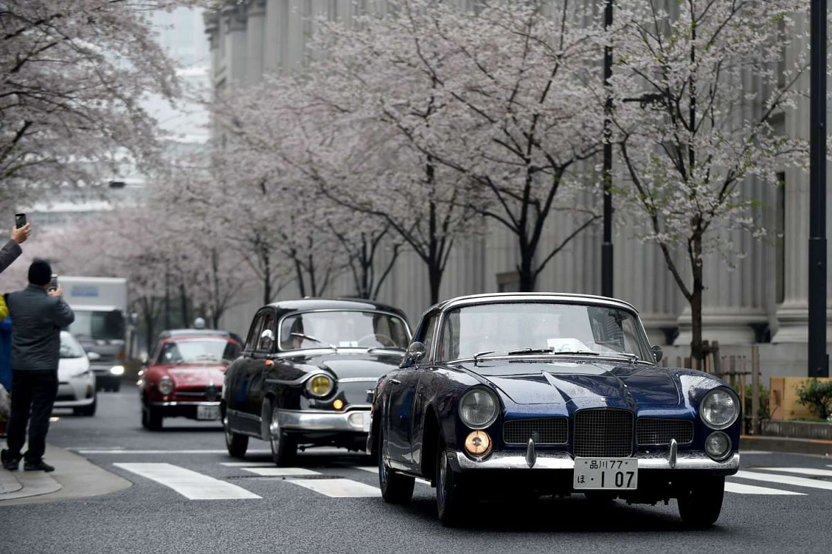 A 1961 Facel Vega Faccllia F2 (right) leads 1960 Panhard PL17 (second from right) and Alpha Romeo Giulia Sprint Speciale, moving beside the cherry blossom trees during the Japan Classic Automobile 2016 event in Tokyo on April 3, 2016.