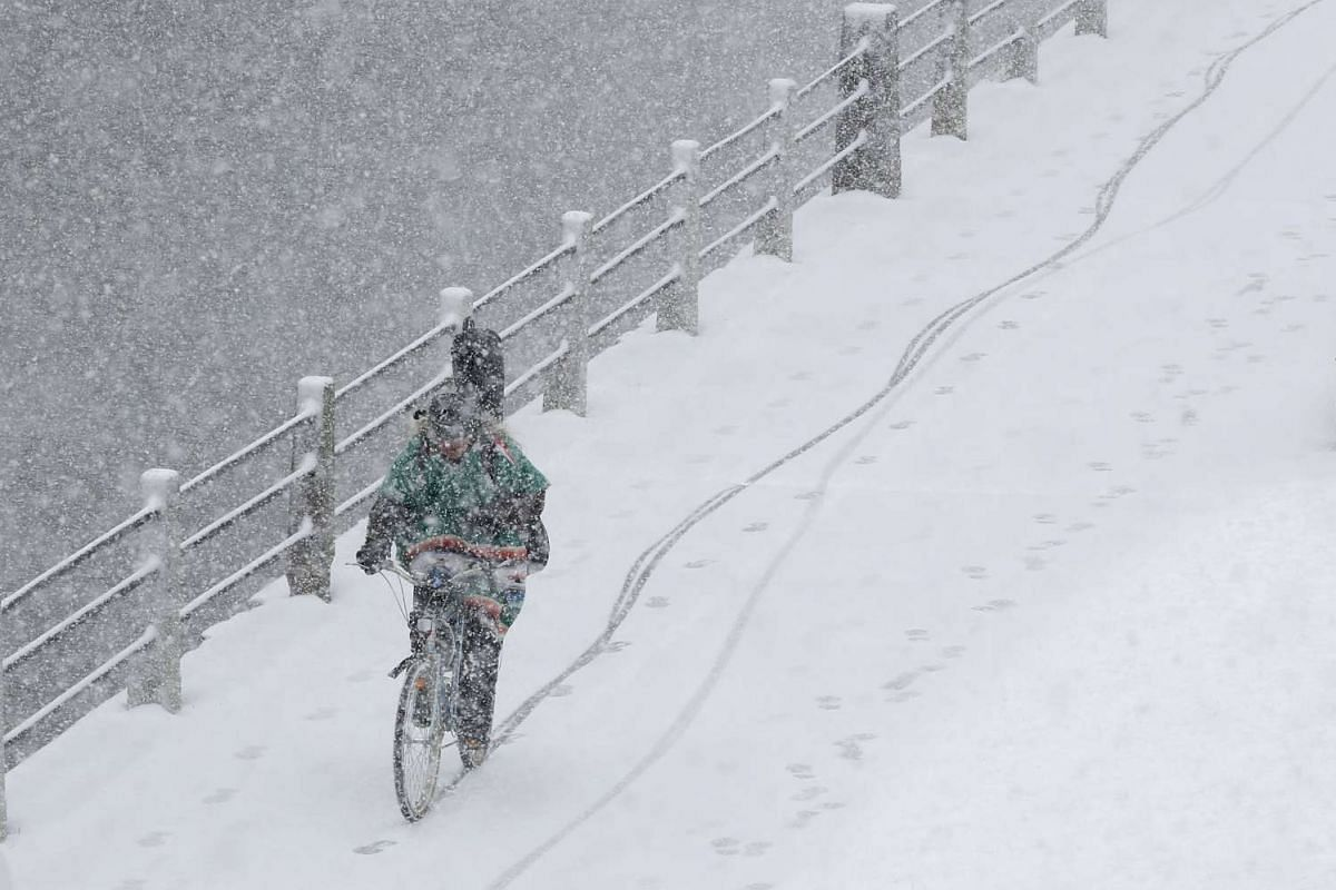 A cyclist rides a bicycle along the Rideau Canal during a spring snow storm in Ottawa, Canada, April 6, 2016. PHOTO: REUTERS
