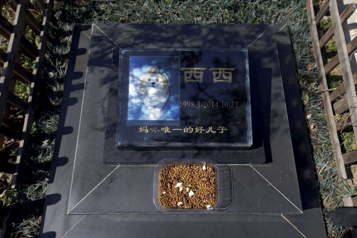 Food is placed on the tomb of pet dog Xixi at Baifu pet cemetery ahead of the Qingming Festival on the outskirts of Beijing, China, on March 26, 2016.