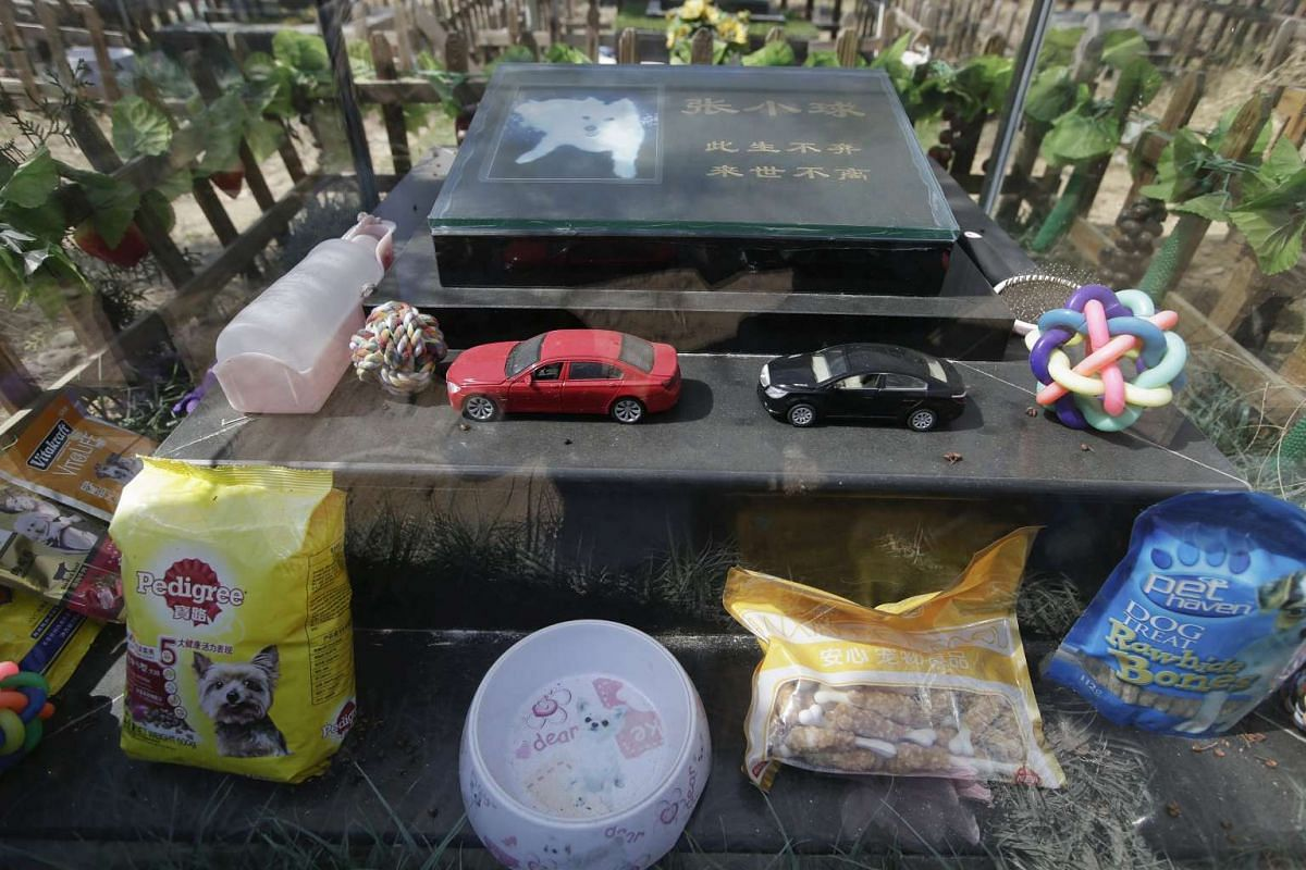 Toy cars, water and food are left around the tomb of pet dog Zhang Xiaoqiu at Baifu pet cemetery ahead of the Qingming Festival on the out skirts of Beijing, China, on March 26, 2016