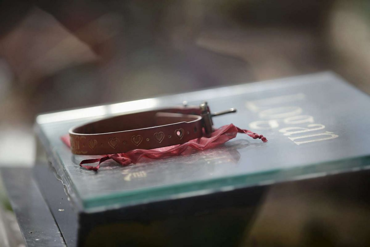 A collar is placed on the tomb of pet dog Logan at Baifu pet cemetery ahead of the Qingming Festival on the out skirts of Beijing, China, on March 26, 2016.