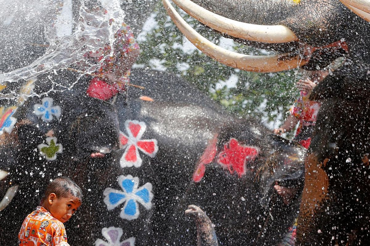 A boy is soaked with water sprayed by elephants in Thailand's Ayutthaya province on April 11.