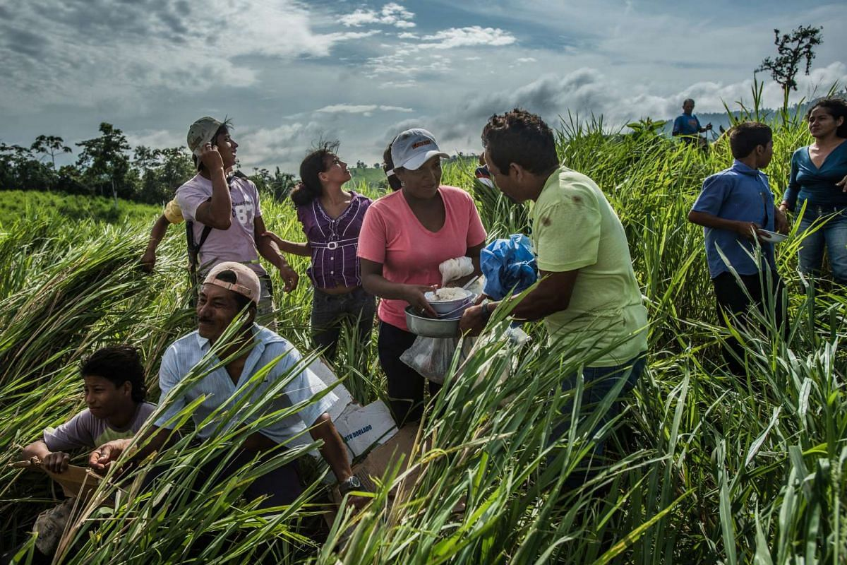 Local residents wait to receive humanitarian aid delivered by helicopter in Chebe, Ecuador, on April 24, 2016.
