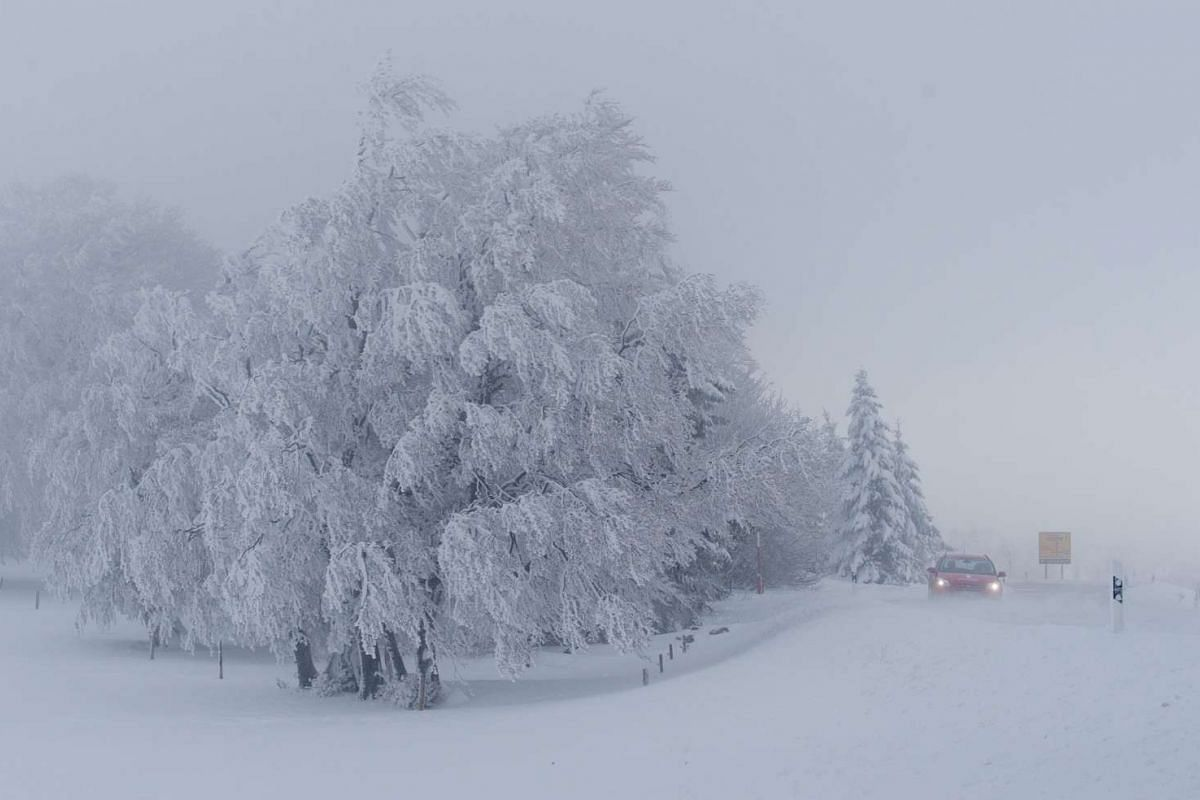 A car driving past snow-covered trees near Hofsgrund, Germany, after parts of the country were hit by heavy snowfall, on April 27, 2016.