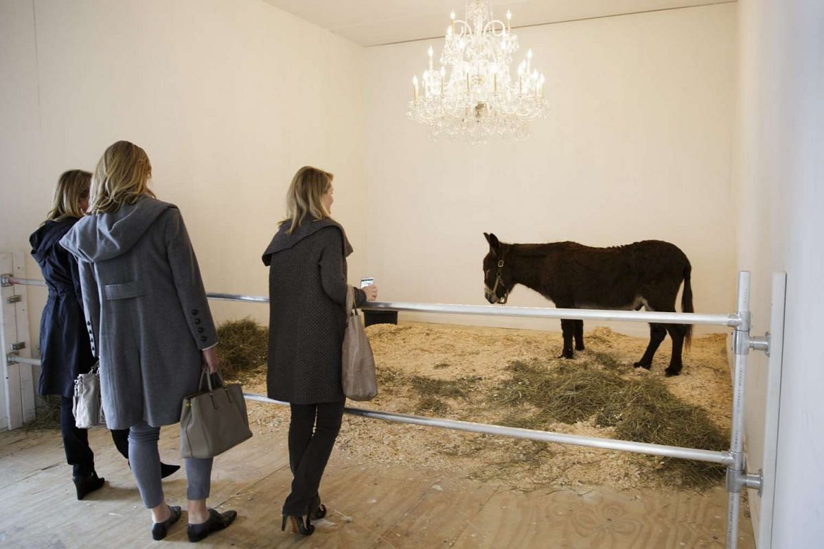 Enter At Your Own Risk - Do Not Touch, Do Not Feed, No Smoking, No Photographs, No Dogs, Thank You, an installation by Italian artist Maurizio Cattelan, which features a live donkey, at the Frieze Art Fair in New York, on May 5, 2016.