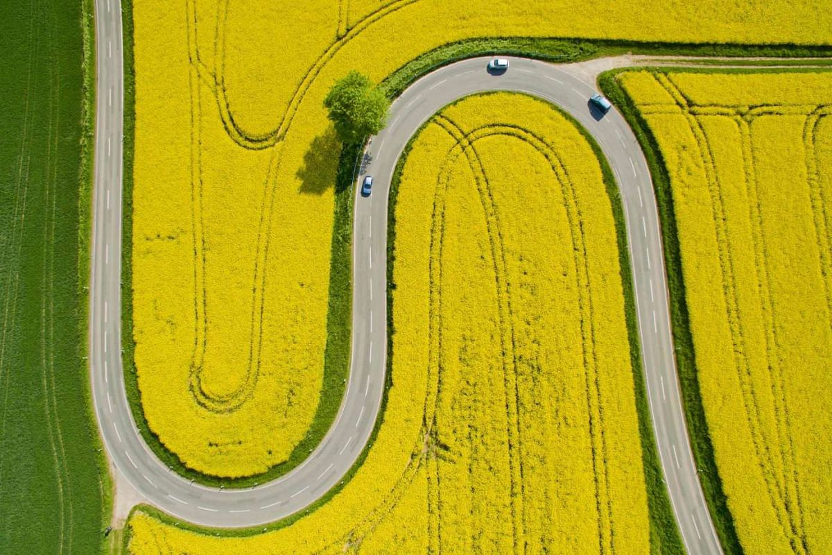 Cars driving on the winding L401 country road past rapeseed fields near Nienstedt, Germany, on May 12, 2016.