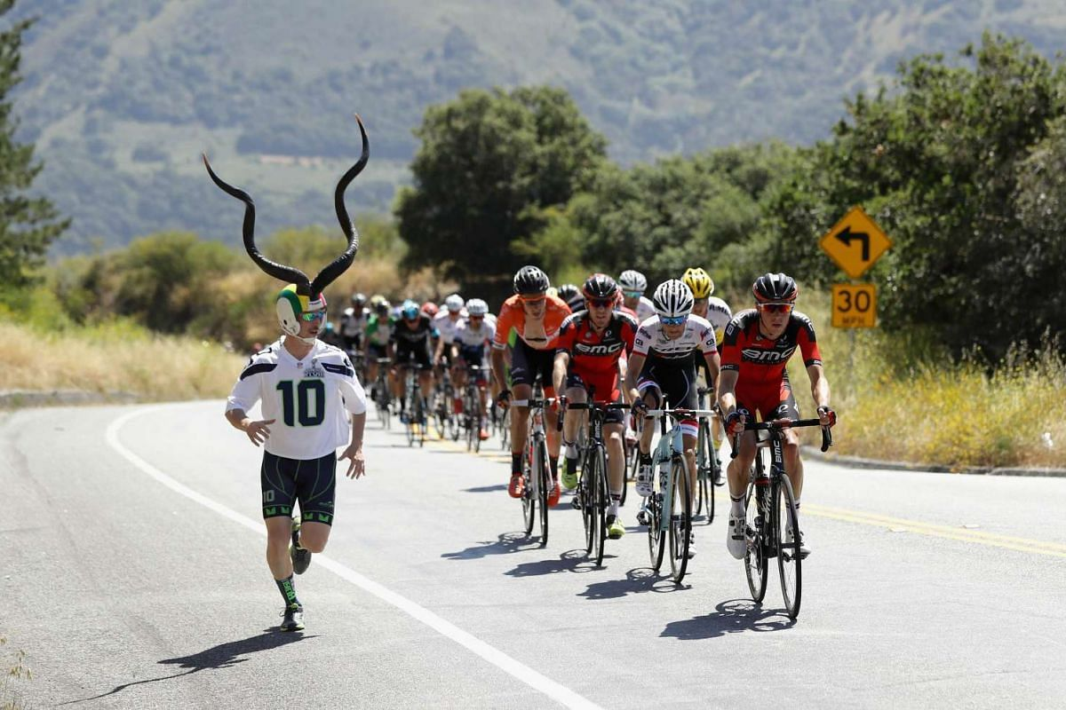 The peloton rides up the Laureles Grade Summit during Stage 4 of the Amgen Tour of California on on May 18, 2016 in Salinas, California. PHOTO: GETTY IMAGES/AFP