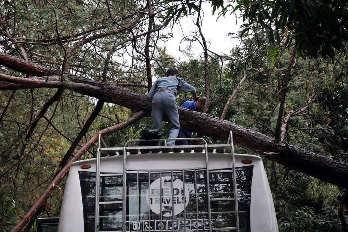 Indian men try to clear off a tree from a bus after it fell due to heavy rain near Baba Baroh, some 60km from Dharamsala, India, May 23, 2016.  PHOTO: EPA