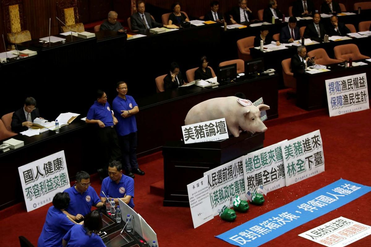 A dummy pig is placed by Kuomintang's legislators as they occupy the podium of the legislative chamber to block Premier Lin Chuan from delivering his first policy report at the Legislative Yuan in Taipei, Taiwan May 31, 2016. PHOTO: REUTERS