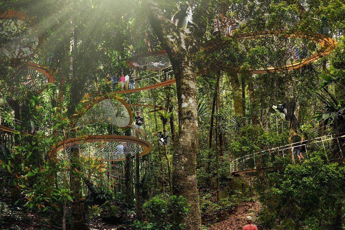 The Mandai area, now home to the Singapore Zoo, River Safari and Night Safari, will boast two new attractions - the relocated Bird Park and Rainforest Park (above).