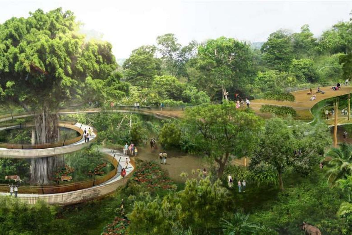 Artist's impression of the rainforest park.