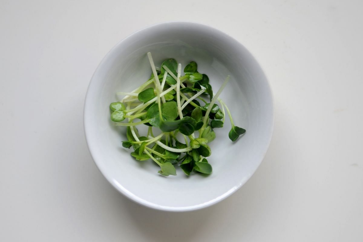 10g kaiware or daikon sprouts (optional).
