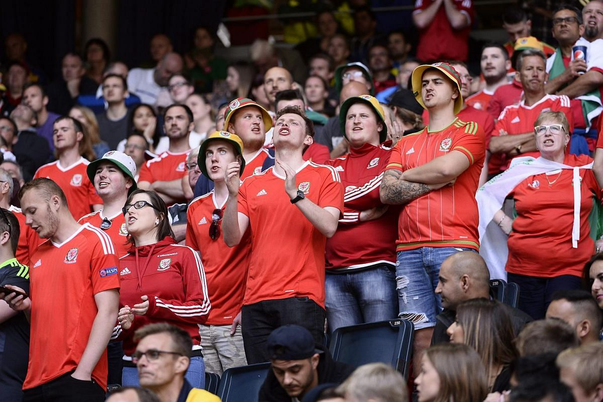 Wales supporters cheering during the friendly match against Sweden at the Friends Arena in Stockholm on June 5, 2016.