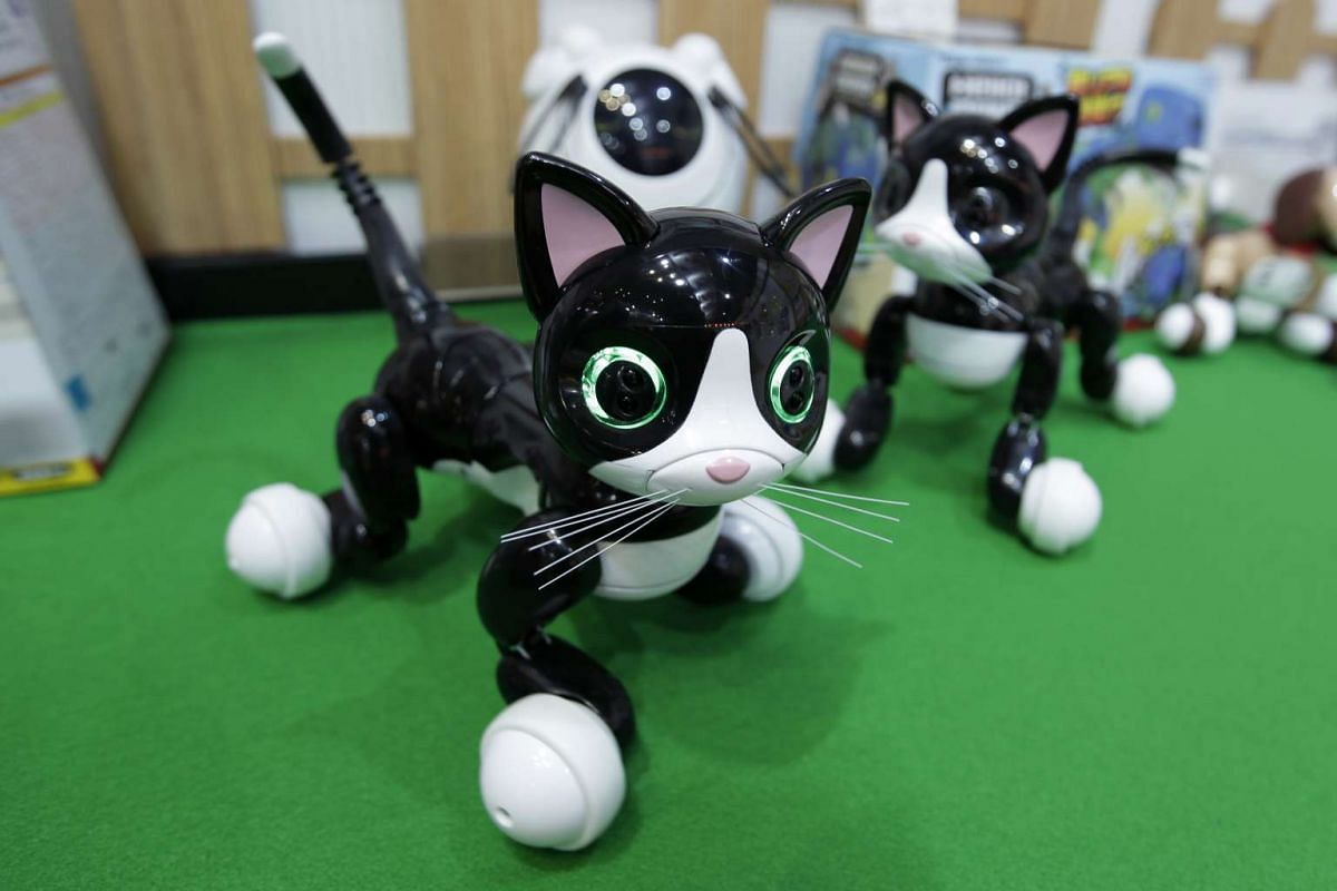 Tomy's Omnibot Hello! Woonyan are displayed at the International Tokyo Toy Show in Tokyo, Japan on June 9, 2016.