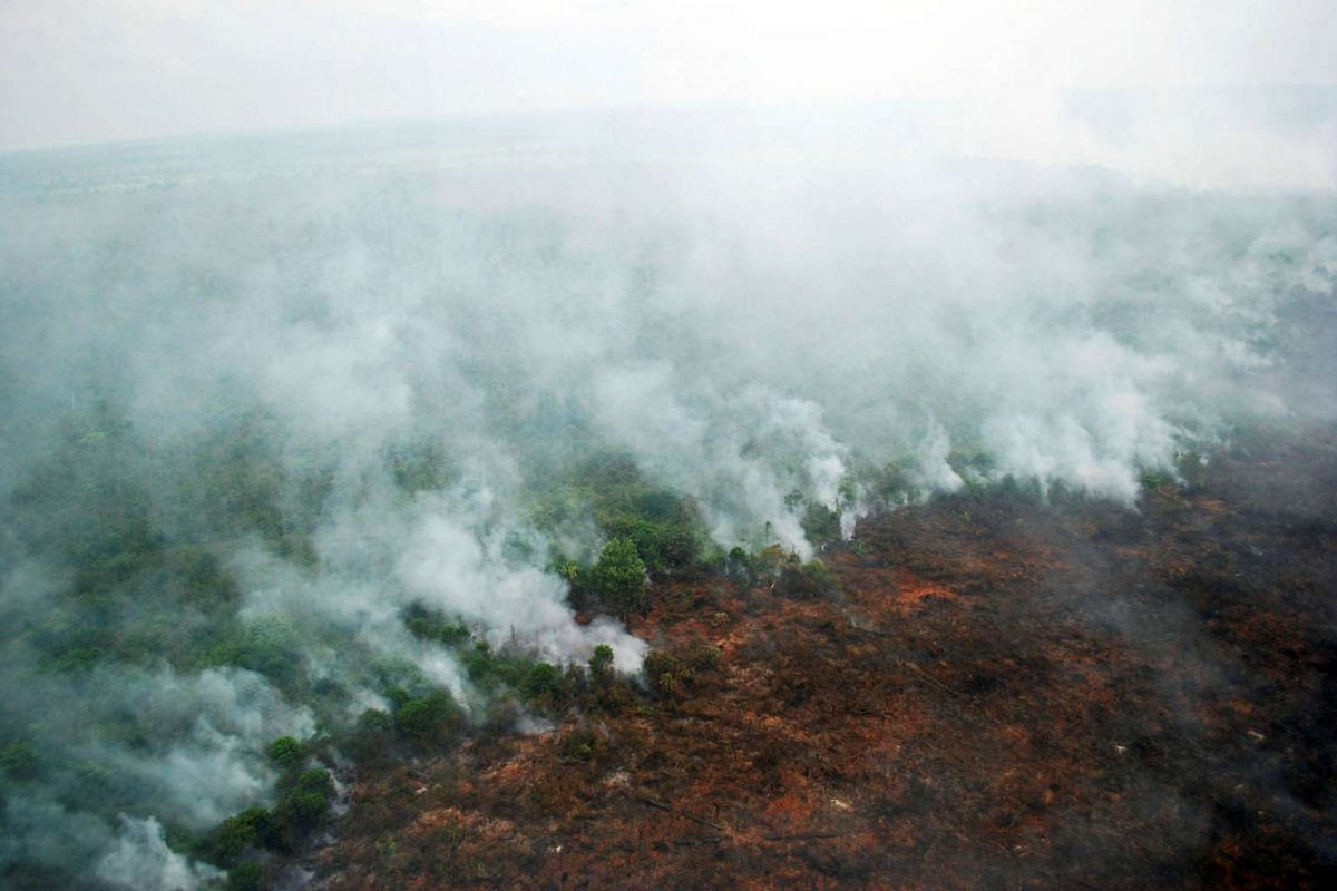 A forest fire is seen burning from a helicopter belonging to the Indonesian National Board of Disaster Management (BNPB) in Pelalawan, Riau province, Sumatra island, Indonesia, on June 10, 2016.
