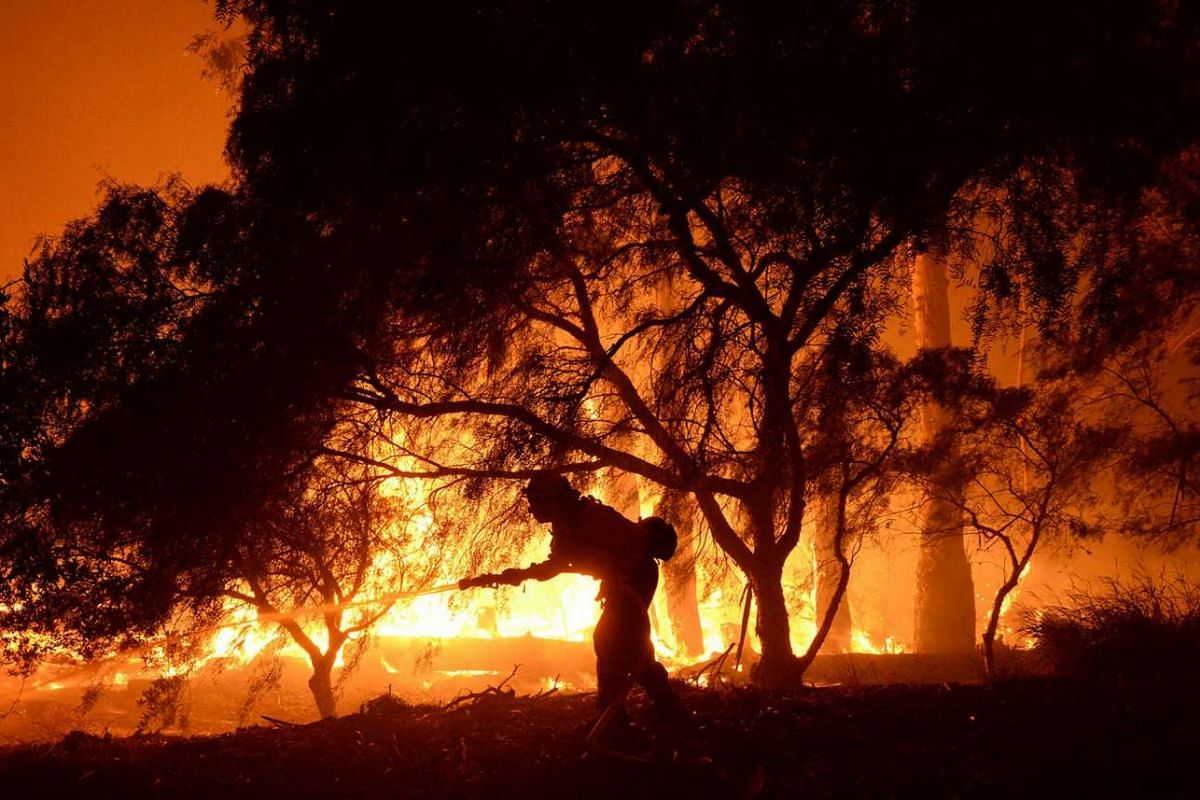 A firefighter battles flames from the Sherpa Fire in Santa Barbara, California, US in this handout photo taken and released to Reuters on June 16, 2016.