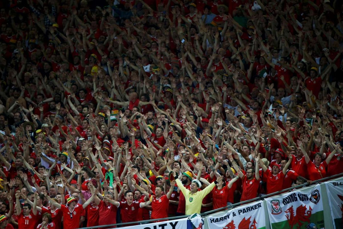 Wales' fans cheer during the match between Russia and Wales on June 20, 2016.